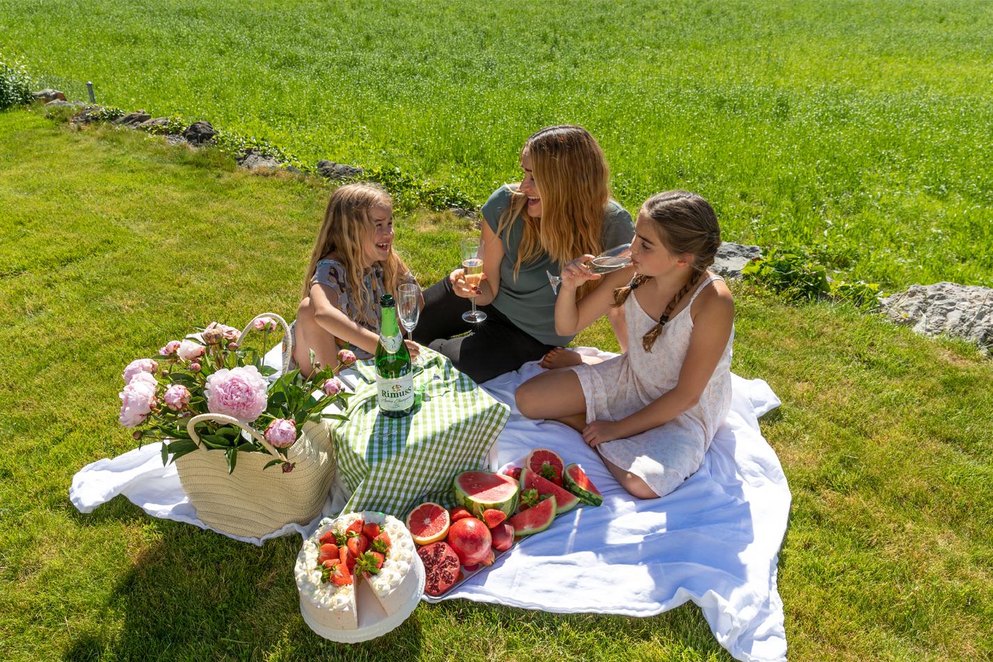 Rimuss Picknick im Freien mit Torte, Wassermelone, Erdbeeren und Rimuss Champion