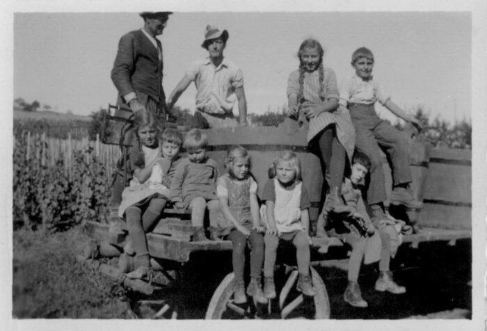 Traubenlese Familie Rahm beim «herbsten» 1946